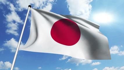 flag_s